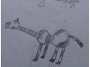 gitaarles-zwolle-gitaardier1044